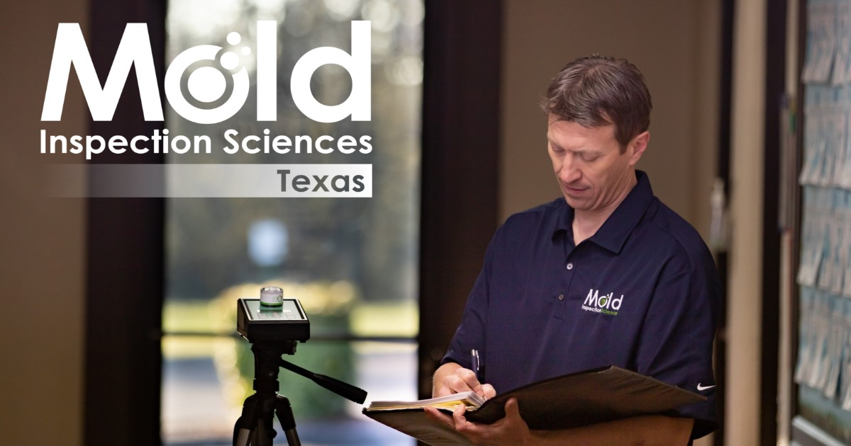 Mold Inspection Sciences of Houston